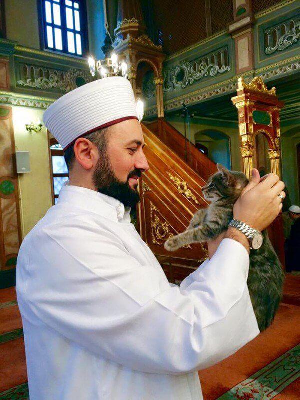 Imam Efe, tampak bersahaja dengan kucing-kucing pengunjung mesjid.