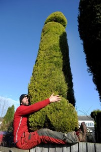 ** EMBARGO FOR USE UNTILL 00:01 ON FEBRUARY 19TH 2016** PIC BY KORAY EROL/CATERS NEWS (Pictured: Chris Bishop posing with his penis shaped tree) - A whopping 18ft penis-shaped tree has been carefully crafted by its tree surgeon owner in a bid to make passers-by titter. Chris Bishop, from Bromsgrove, Worcestershire, has spent the last three years encouraging the 25-year-old Cypress tree to be a grower AND a shower before whacking out his specialist tools to give the tree its annual hourly trim. The monster member stands proud in Chris front garden much to the bemusement of his neighbours. SEE CATERS COPY
