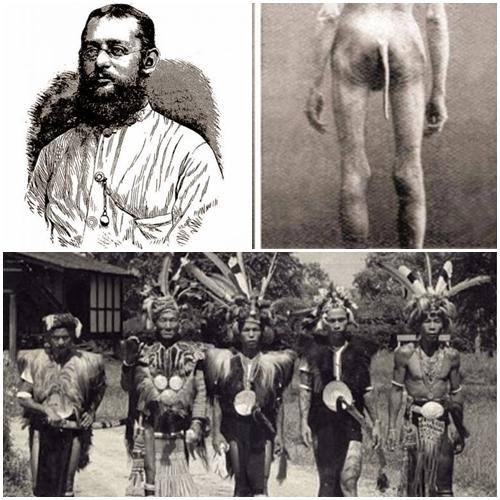 Misteri Orang Boentoet Suku Berekor Dari Pulau Borneo_anehtapinyata.net