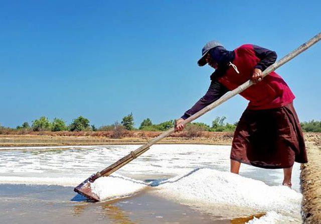 Banyak PHK, Industri Menjerit Minta Pemerintah Kembali Impor Garam