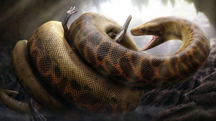 Ular raksasa yang pernah hidup dibumi
