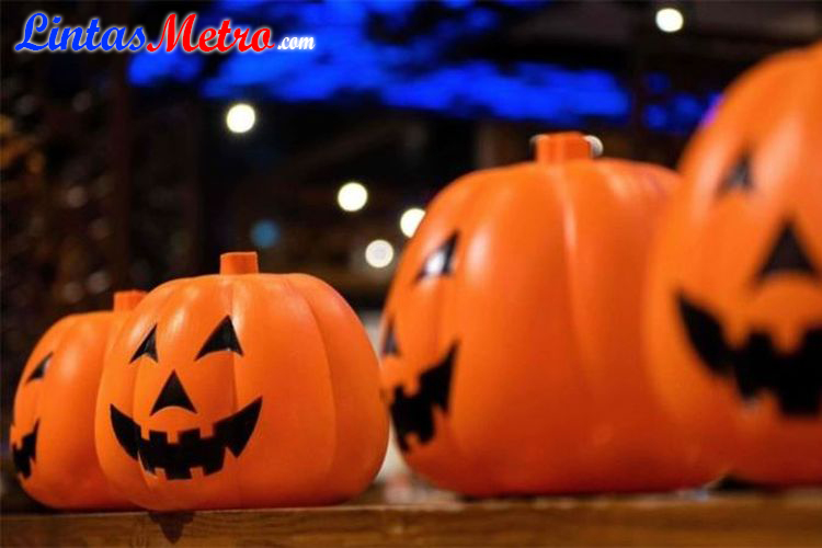 Ini Alasan Labu Identik dengan Halloween