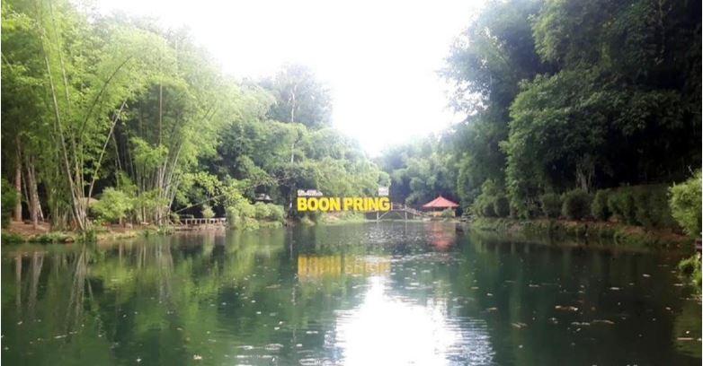 Bukan di Jepang Ini Hutan Bambu Keren dari Malang.