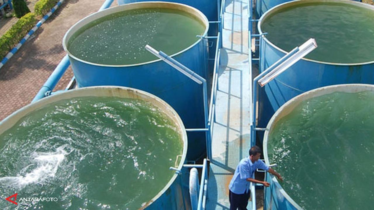 Aetra Akan Perbaiki Pipa Hari Ini Warga Terdampak Diminta Hemat Air