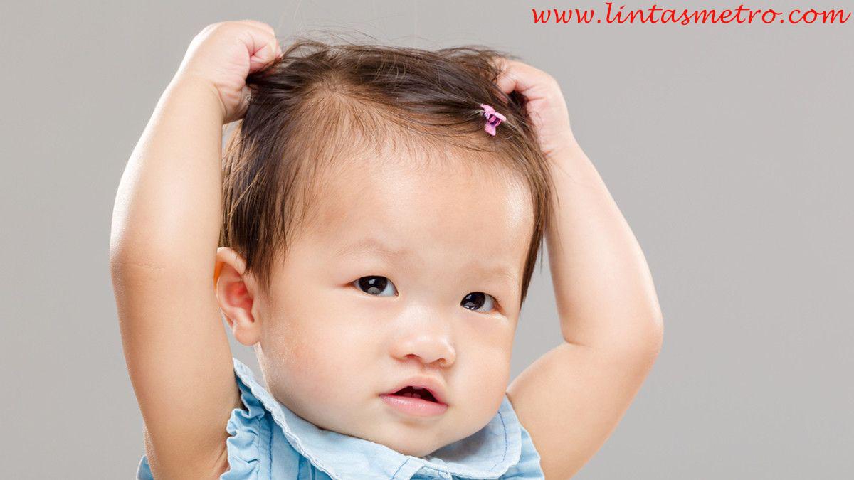 http://lintasmetro.com/wajib-di-ketahui-penyebab-rambut-anak-susah-tumbuh!/